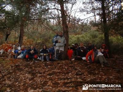 Parque Natural de Tejera Negra; rutas en la pedriza; el yelmo la pedriza